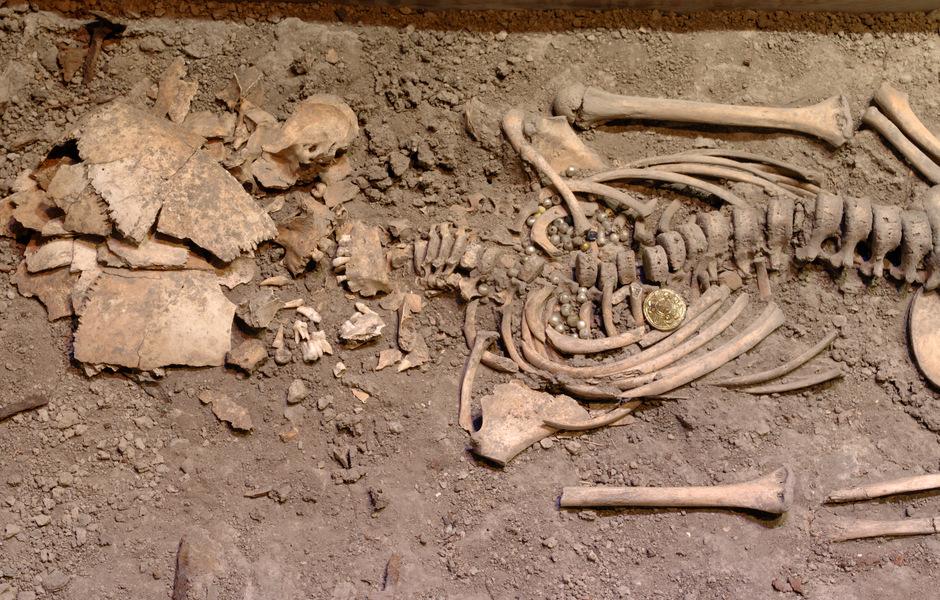 Birkaflickans skelett.