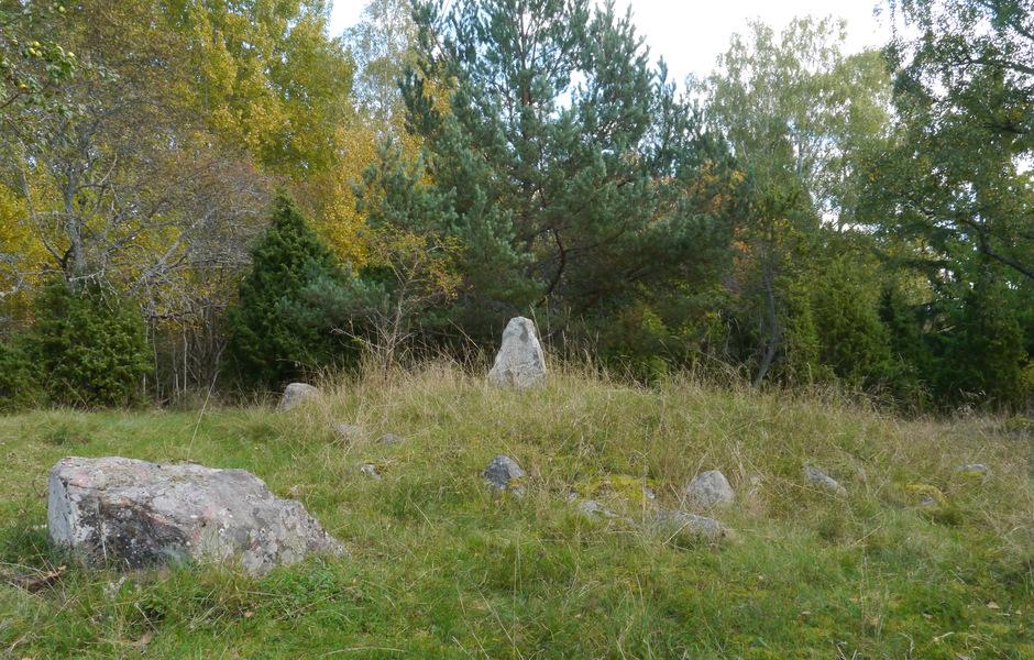 Ett par av de mindre gravhögarna på Ormknös har även merkarats med resta stenar. Foto: Jonathan Olsson/SHM