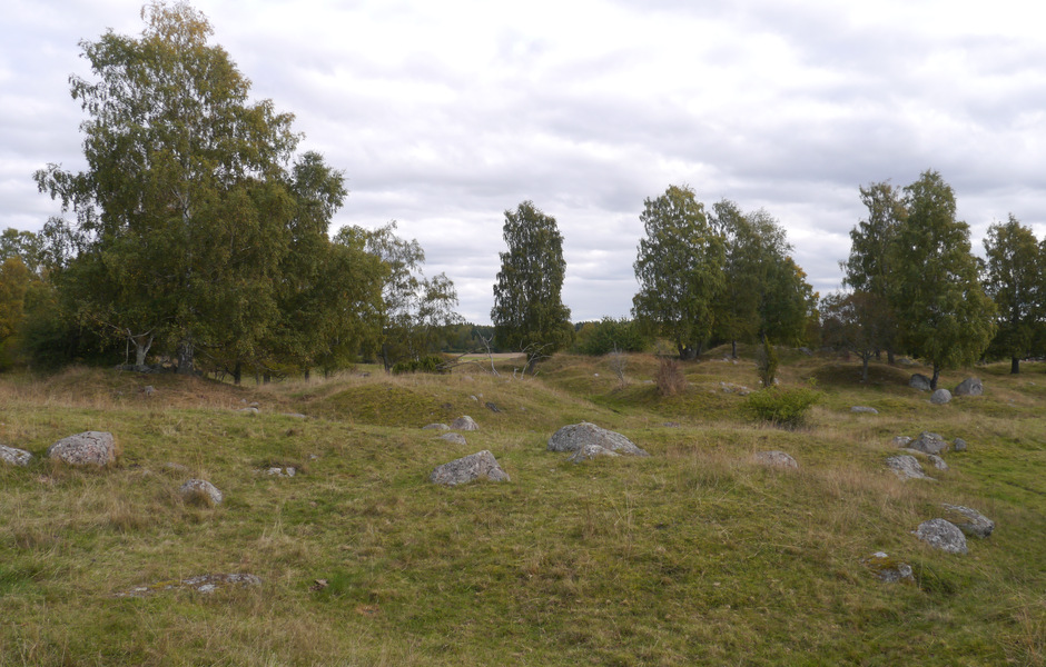 Vy över Hemlandens östligaste del. I förgrunden syns en flack yta med större glest liggande stenblock. Åtskilliga av dessa härrör troligtvis från bortodlade gravar. Foto: Jonathan Olsson/SHM